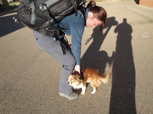 A very affectionate dog wishing Heike a  Buen Camino as we leave Reliegos
