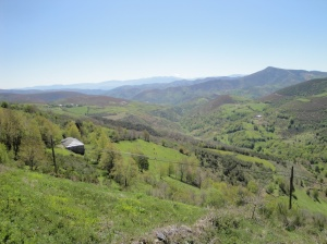 The Galician countryside is very beautiful. I wish you could see the depth and expanse of this countryside.